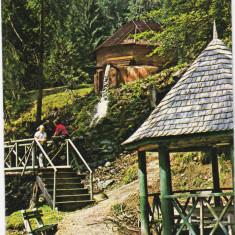 STANA DE VALE, 1980 - Carte Postala Crisana dupa 1918, Circulata, Fotografie