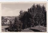 CARTE POSTALA ZALAU, Necirculata, Fotografie