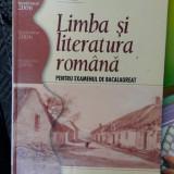 LIMBA SI LITERATURA ROMANA PENTRU EXAMENUL DE  BACALAUREAT