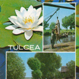 CARTE POSTALA, TULCEA 1972, 1 - Carte Postala Dobrogea dupa 1918, Circulata, Fotografie