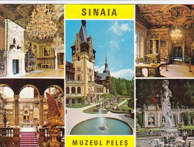 CARTE POSTALA , SINAIA , MUZEUL PELES , 1973 foto