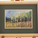 Pictură în ulei de A. Ioniță (nesemnat) peisaj cu mesteceni - Pictor roman, Peisaje, Realism
