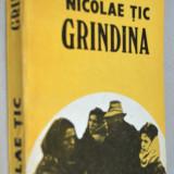 Grindina - Nicolae Tic - Roman
