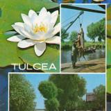 CARTE POSTALA, TULCEA 1972, 2 - Carte Postala Dobrogea dupa 1918, Circulata, Fotografie