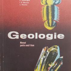 GEOLOGIE MANUAL PENTRU ANUL I LICEE - Gheorghiu, Bacanu, Neamu - Carte Geografie