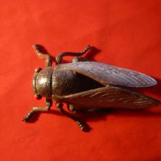 Figurina Insecta - Cicada , L= 9 cm , plastic