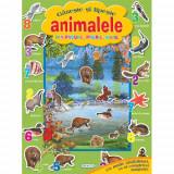 Gaseste si Lipeste Animalele din Padure, Prerie, Mare - Carte de colorat