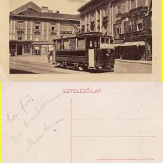 Timisoara - rara-tramvai, animata