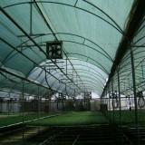 Plasa/umbrire/gard/protectie/schela/antivant/agricultura/constructii/