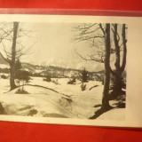 Ilustrata - Muntii Carpati iarna - 1000 m, Ed. Karpathenwachtverlag 1924 Rasnov