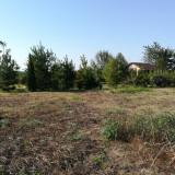 Teren - Teren de vanzare, 2000 mp, Teren extravilan