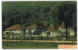 473 - Valcea, CALIMANESTI - old postcard - unused, Necirculata, Printata