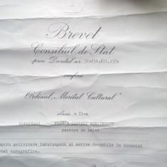 Brevet MERITUL CULTURAL, cls.a II a