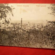 Ilustrata Darste- Sacele - Vedere Generala, circulat 1925 - Carte Postala Transilvania dupa 1918, Circulata, Printata