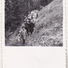Bnk foto - Brasov - Poteca spre Postavaru - 1959 - Fotografie, Alb-Negru, Natura, Romania de la 1950