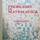 PROBLEME DE MATEMATICA PENTRU GIMNAZIU - I. Petrica, C. Stefan, St. Alexe 1985 - Carte Matematica