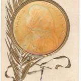 Carte Postala Crucea Rosie - Regina Maria - Carte Postala Muntenia 1904-1918, Necirculata, Printata