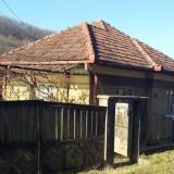 Vand casa la tara - Casa de vanzare, 100 mp, Numar camere: 4, Suprafata teren: 1900