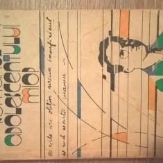 Mircea Eliade - Romanul adolescentului miop (Muzeul Literaturii Romane, 1988)