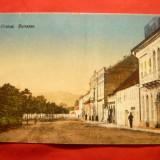 Ilustrata Orsova anii '20, color - Carte Postala Banat dupa 1918, Necirculata, Printata