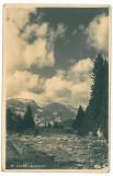 3687 - Dambovita, VALEA IALOMITEI - old postcard, real PHOTO - unused
