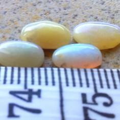 4 opal australian oval