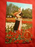 Ilustrata - Folclor- Femeie olandeza in costum national cu vigneta Olanda, Necirculata, Printata