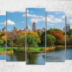 Tablou decorativ pe Forex - Plimbare de toamna la New York - Tablou pe metal