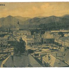 3968 - Maramures, BAIA-MARE, Market - old postcard - used - 1907 - Carte Postala Maramures 1904-1918, Circulata, Printata