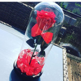 Cupola de sticla de 28 cm cu trandafir criogenat - Decoratiuni nunta