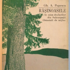 RASINOASELE IN ZONA DEALURILOR DIN SUBCARPATII ORIENTALI DE MIJLOC de GH. A. POPESCU, 1984 - Carte Biologie
