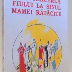 REINTOARCEREA FIULUI LA SANUL MAMEI RATACITE de DUMITRU TEPENEAG, 1993