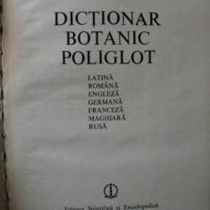 DICTIONAR BOTANIC POLIGLOT-C.VACZY, BUC.1980 - Carte Biologie