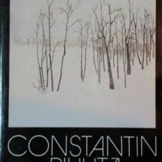 CONSTANTIN PILIUTA, PEISAJELE AMINTIRII de CONSTANTIN PRUT, BUC. 1983 - Carte Istoria artei