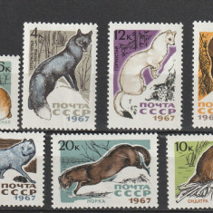 Fauna, animale de blana, URSS. - Timbre straine, Nestampilat