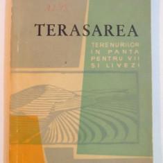TERASAREA TERENURILOR IN PANTA PENTRU VII SI LIVEZI de N. BLEGU SI D. VOICU, 1963 - Carte Biologie