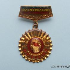Insigna  UTC  -  BRIGADIER  1948 - 1983