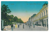 4005 - TURNU SEVERIN - old postcard - unused