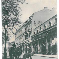 3998 - GALATI, stores, cat - old postcard - used - 1903, Circulata, Printata