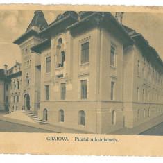 4014 - CRAIOVA, Primaria - old postcard - unused - Carte Postala Oltenia 1904-1918, Necirculata, Printata