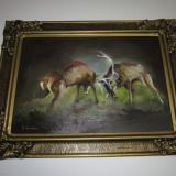 Tablou ulei panza- Lupta cerbi, Animale, Altul
