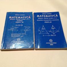 MATEMATICA - MANUAL PENTRU CLASA a X-a - 2 VOLUME PROFIL M1, Mircea Ganga, RF5/4 - Manual scolar mast, Clasa 10, Mathpress