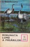 Minunata lume a păsărilor
