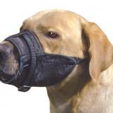 Botnita textila caine ajustabila sx - catel yorkshire, terrier, westie, Ham