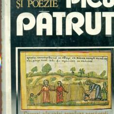 Miniaturi si poezie - Picu Patrut