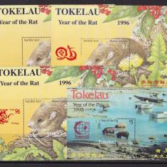 Tokelau 1995/96 7 blocuri cu fauna MNH w46 - Timbre straine, Nestampilat