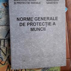Norme Generale De Protectia A Muncii - MINISTERUL MUNCII, MINISTERUL SANATATII - Carte Dreptul muncii
