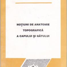 L. PODOLEANU, V. NIMIGEAN - NOTIUNI DE ANATOMIE TOPOGRAFICA A CAPULUI SI GATULUI