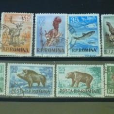 ROMANIA 1956 - VANATOAREA. SERIE STAMPILATA DEPARAIATA, S184, Stampilat