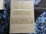 Zoologia vertebratelor - Z. feider
